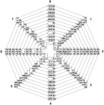Eight-group_periodic_table