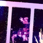 20150329-011106-4266868.jpg