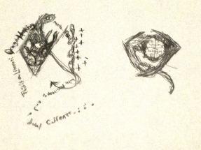IMG_1901